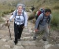 Inca Trail to Machu Picchu Hikes