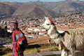 Peru Tours and Packages